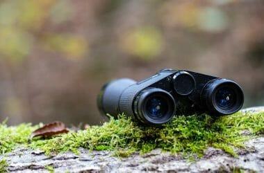 Best Binoculars For Hiking